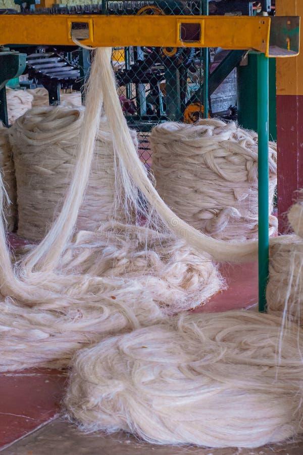 龙舌兰植物纤维转动,绳索建筑的,被采取在工厂 免版税库存图片