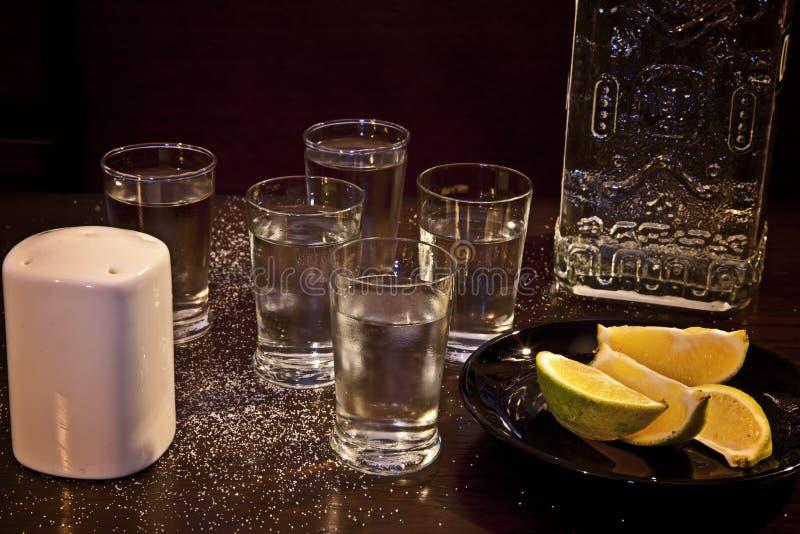 龙舌兰酒 库存图片