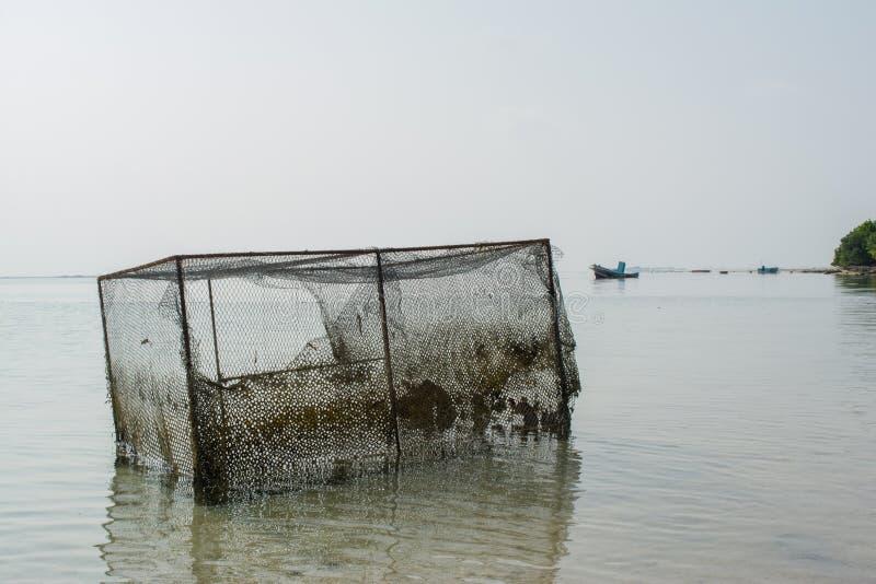 龙虾的老打破的陷井在热带海滩 免版税库存图片