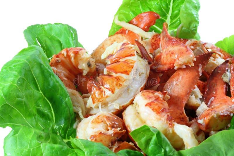 龙虾肉 库存照片