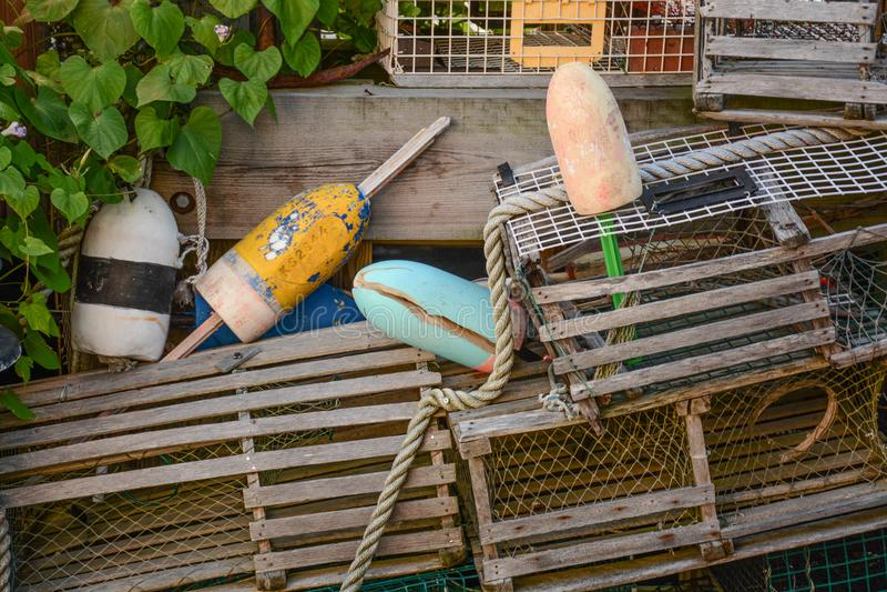 龙虾齿轮 免版税库存图片