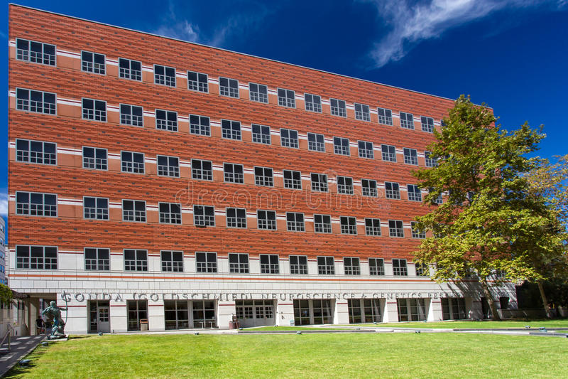 龚德基金会(Goldschmied)神经科学和遗传学研究中心 免版税库存照片