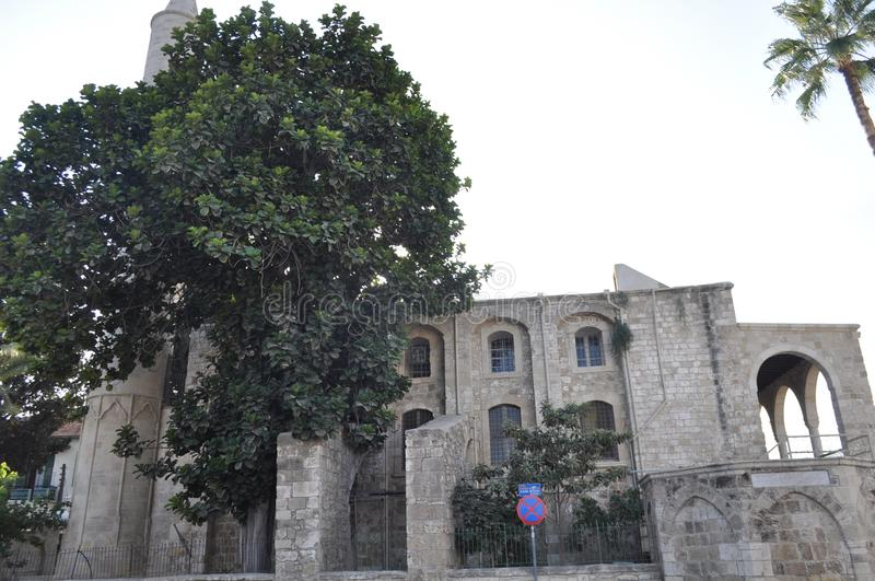 Ofmedievale LarnacaLarnakadi TheCastlenel Cipro immagini stock