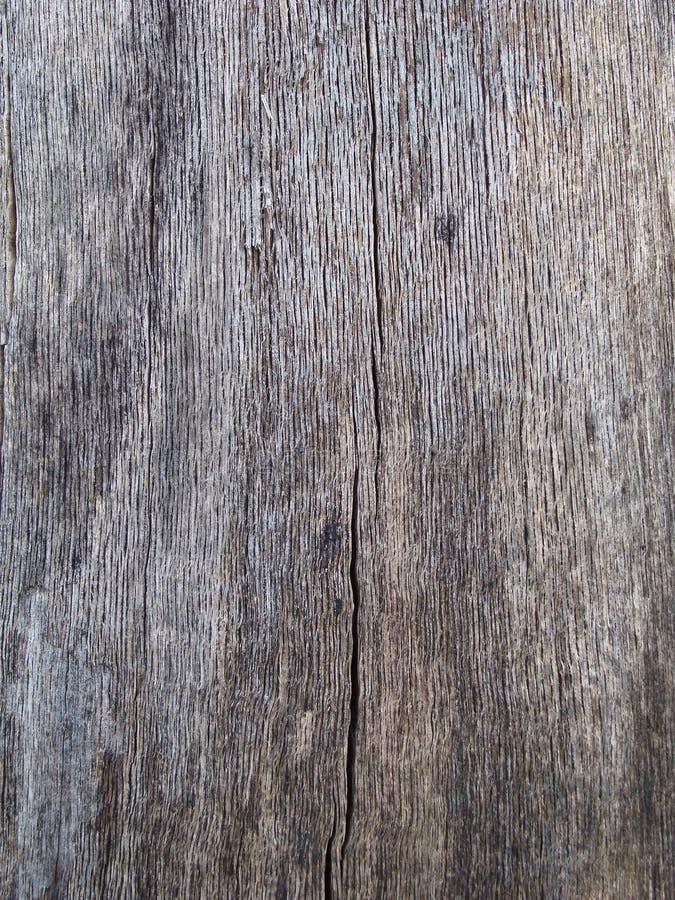 001纹理木头 库存照片
