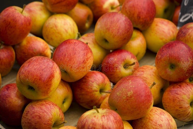 01个苹果 免版税库存照片