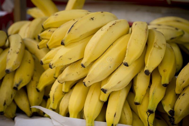 01 банан стоковая фотография