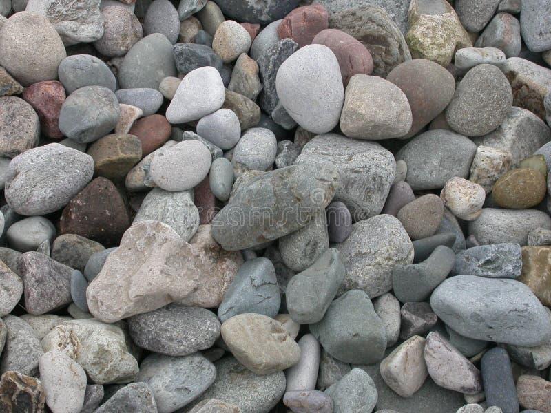 01 kamyczek na plaży zdjęcia royalty free