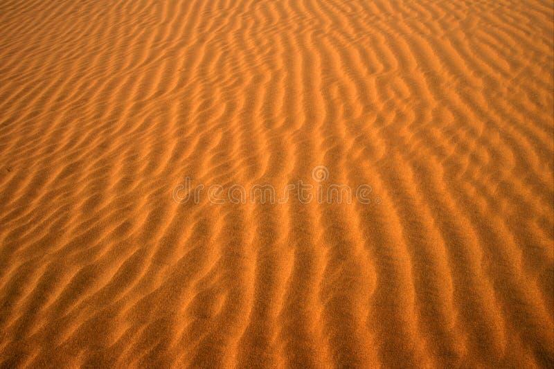 01 pustyni obraz royalty free