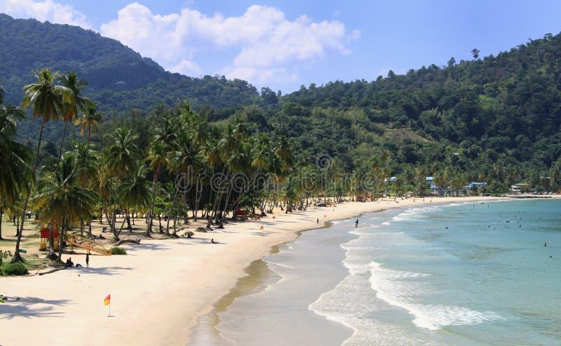 01 strand karibiska trinidad royaltyfri fotografi