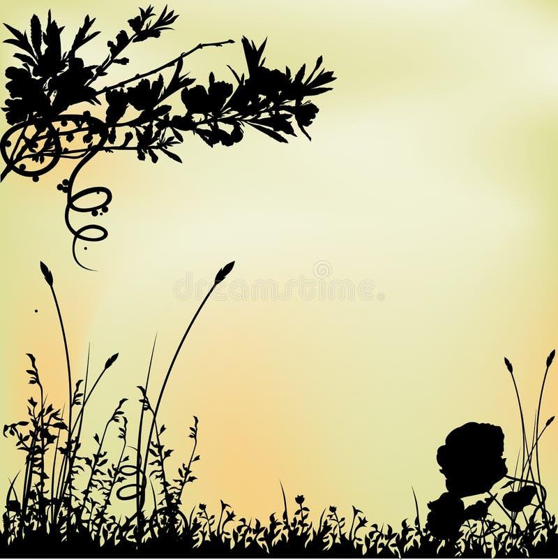 01 tło kwiecisty ilustracji