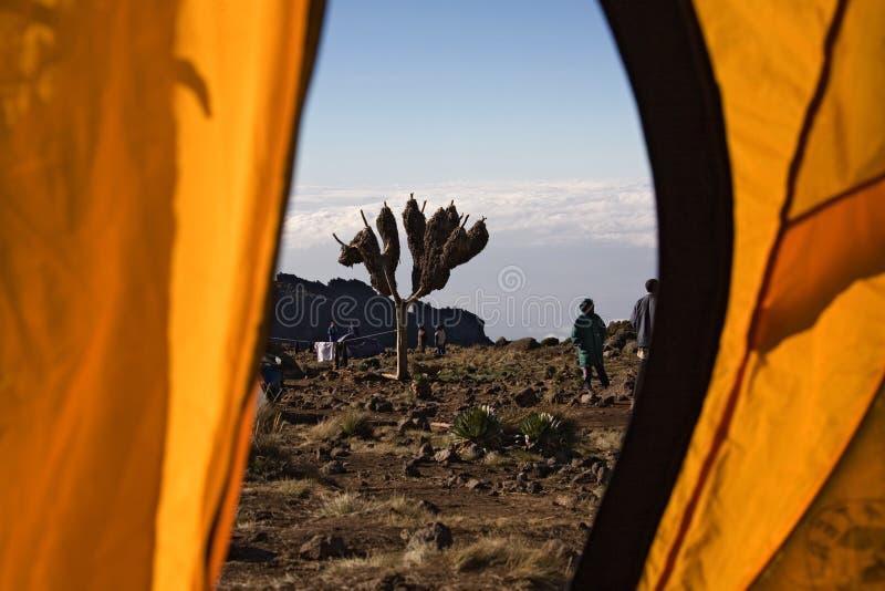 012 kilimanjaro帐篷视图 库存图片