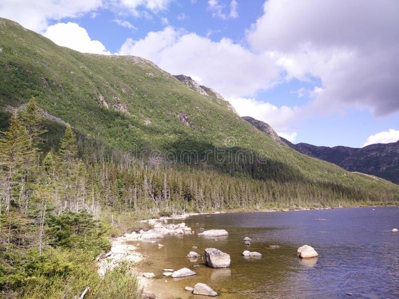 014 - Parc de la Gaspésie national : Laque Américains aux. photo libre de droits
