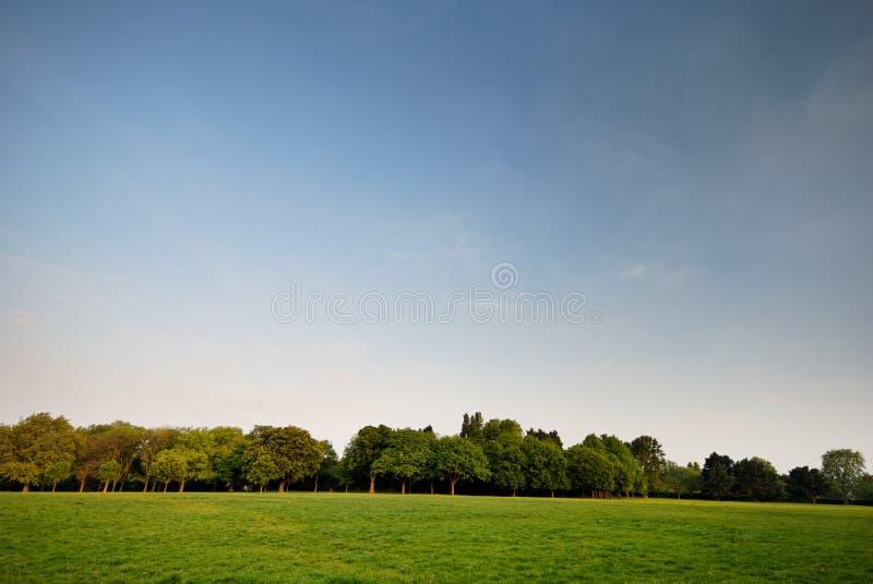 04伦敦公园董事s 免版税库存照片