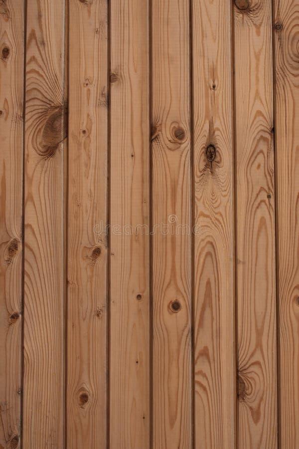 05纹理木头 免版税库存照片