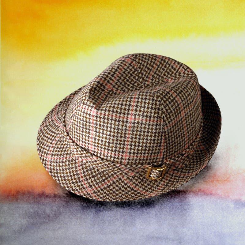 05 kapeluszy obraz stock