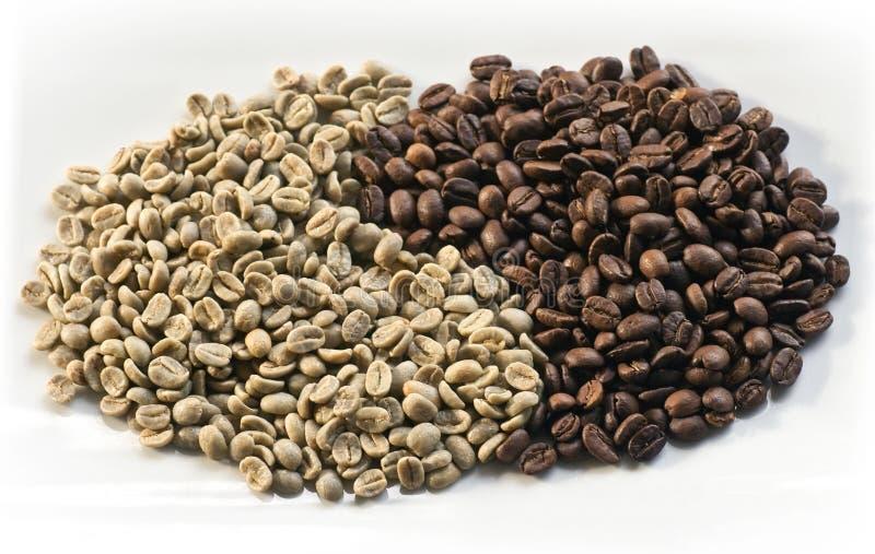 06粒豆咖啡 库存照片