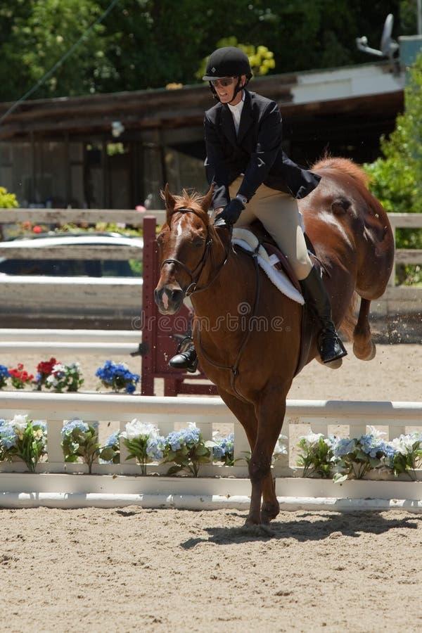 06 2010 долин выставки portola в июне лошади ca открытых стоковое фото