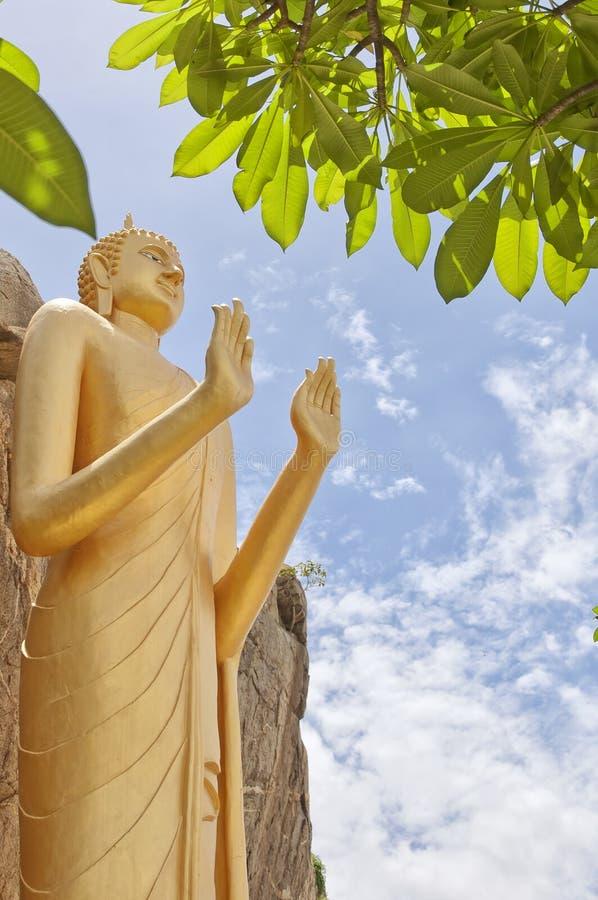 07 buddha standing royaltyfri foto
