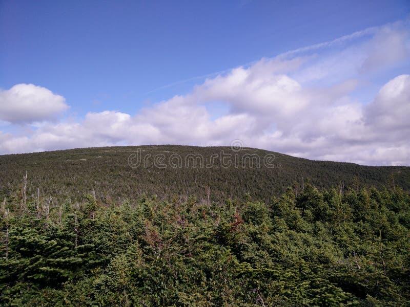 088 - Parc de la Gaspésie national : Mont Joseph-Fortin images libres de droits