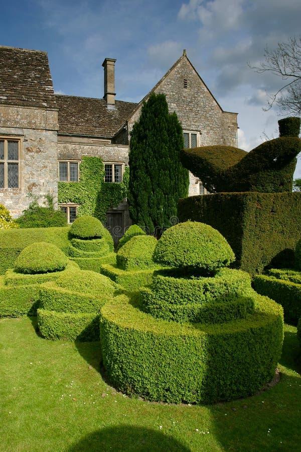1个修剪的花园 库存照片