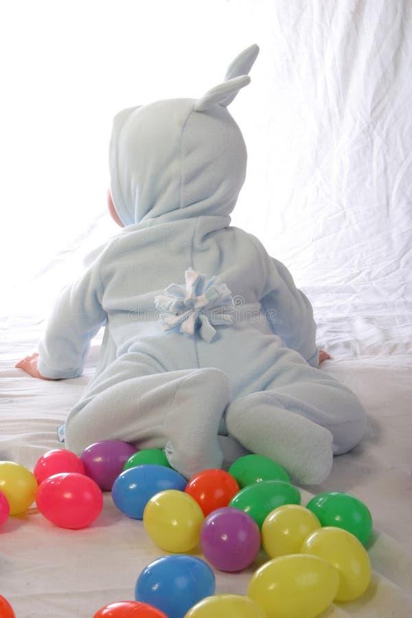 1个兔宝宝 免版税库存照片