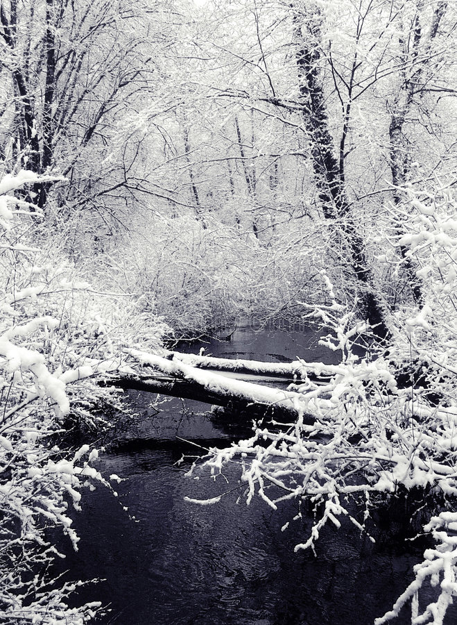 1个小河降雪视图 库存图片