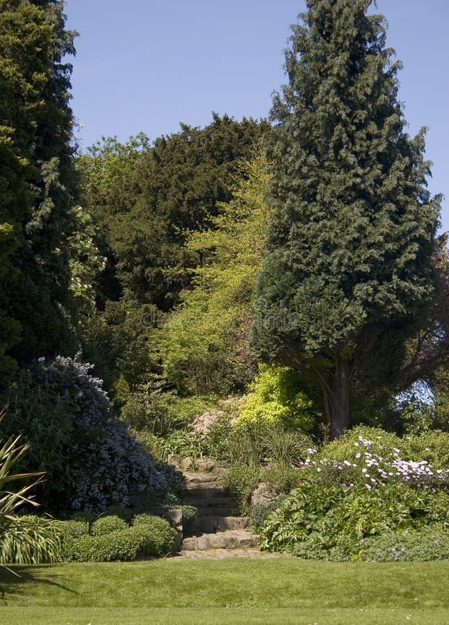 1个庭院路径 库存照片