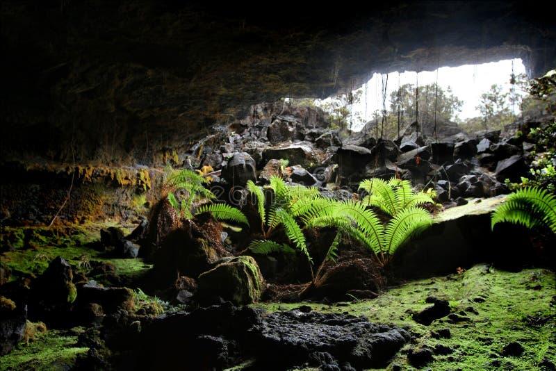 1个洞入口熔岩管 库存图片