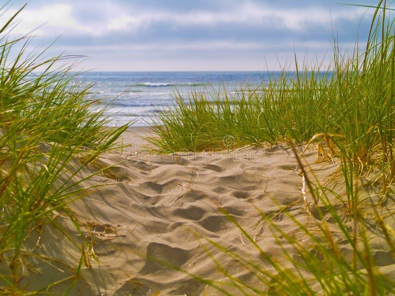 1个海滩路径 免版税库存照片