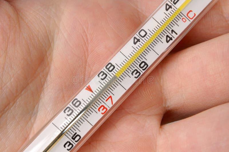 1个温度计 库存照片