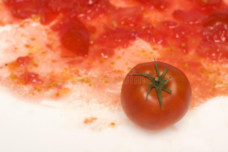 1个蕃茄 免版税库存图片