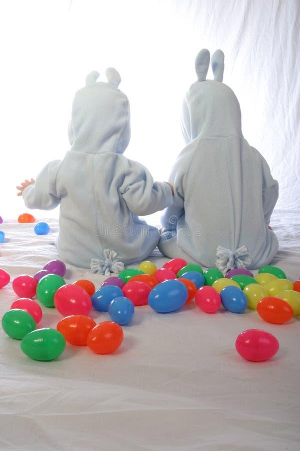 1兔宝宝 免版税图库摄影