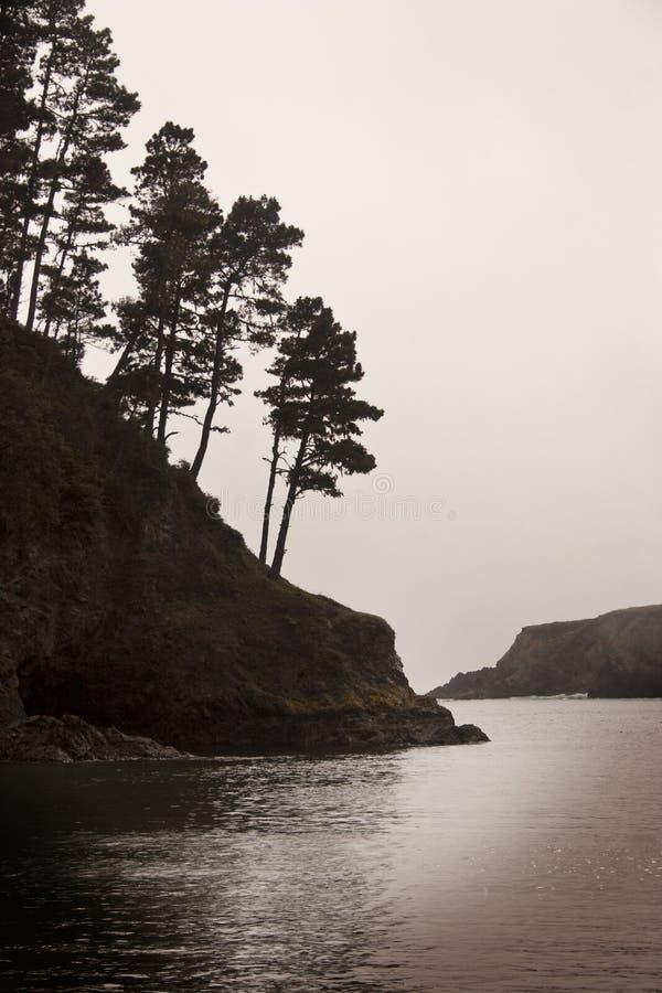 1加州hwy mendocino 免版税图库摄影