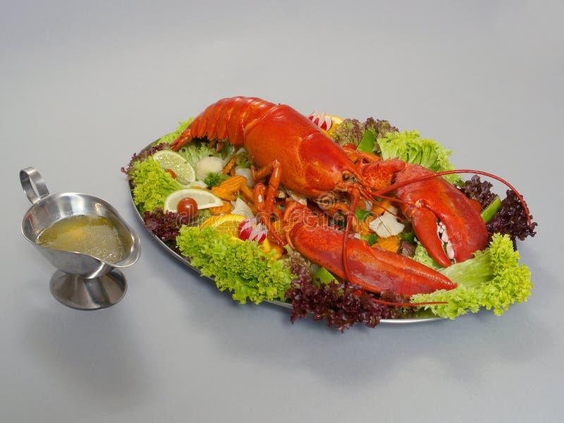 1只龙虾 免版税库存图片