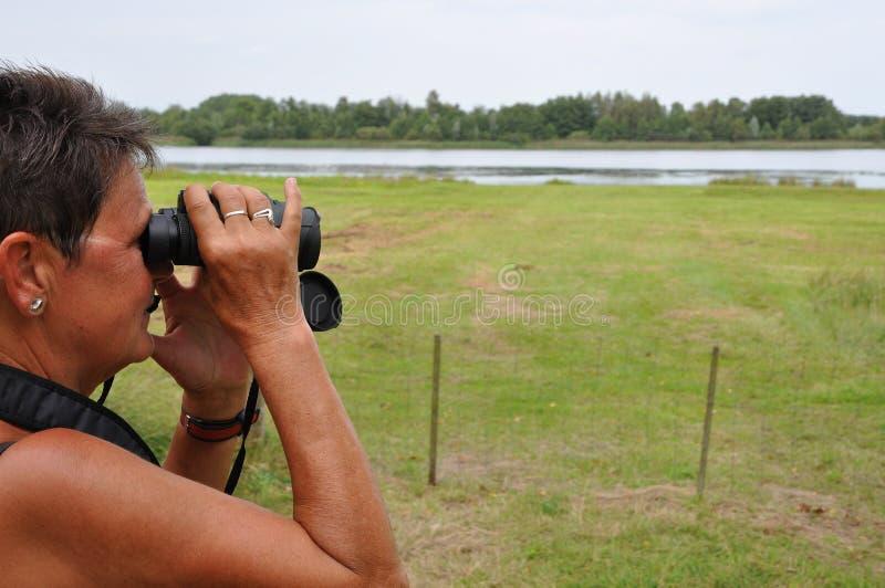 1名鸟的监视人的高级妇女 库存照片
