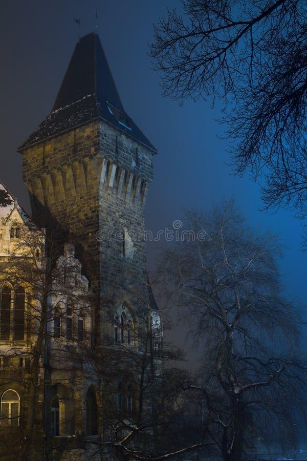 1座城堡 免版税库存图片