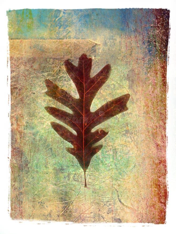 1张叶子绘画 免版税库存照片