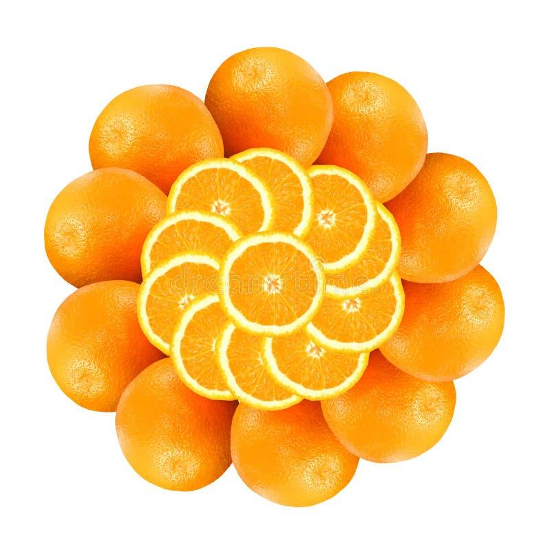 1朵花桔子 库存图片