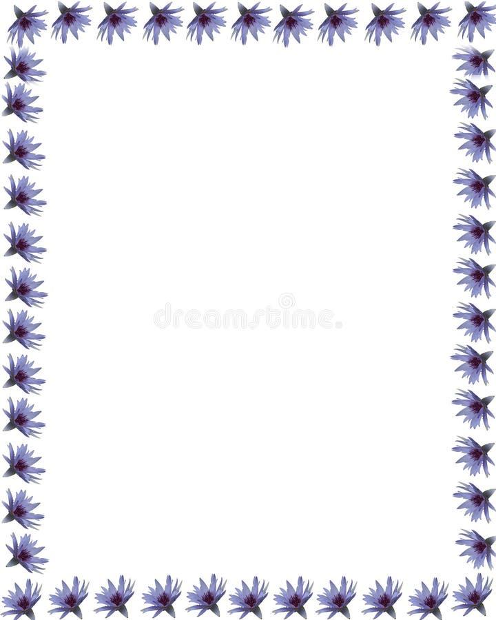 1杯边界百合紫色水 免版税库存照片