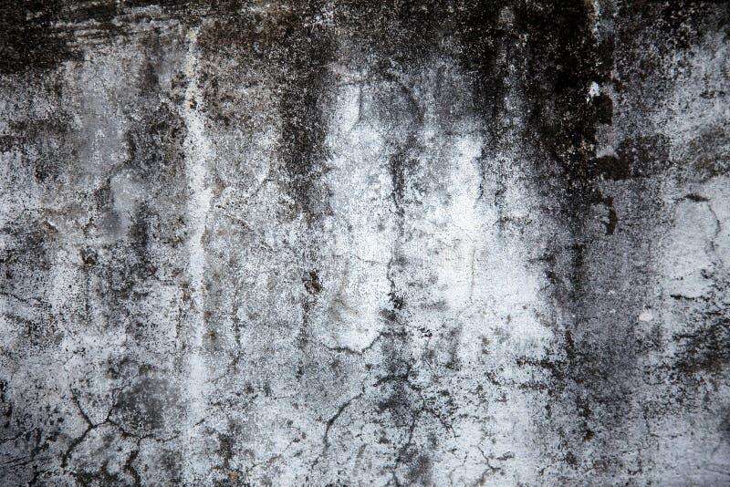 1水泥纹理 免版税库存照片