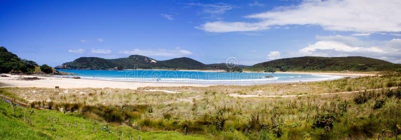 1海湾matai新的北国全景西兰 图库摄影