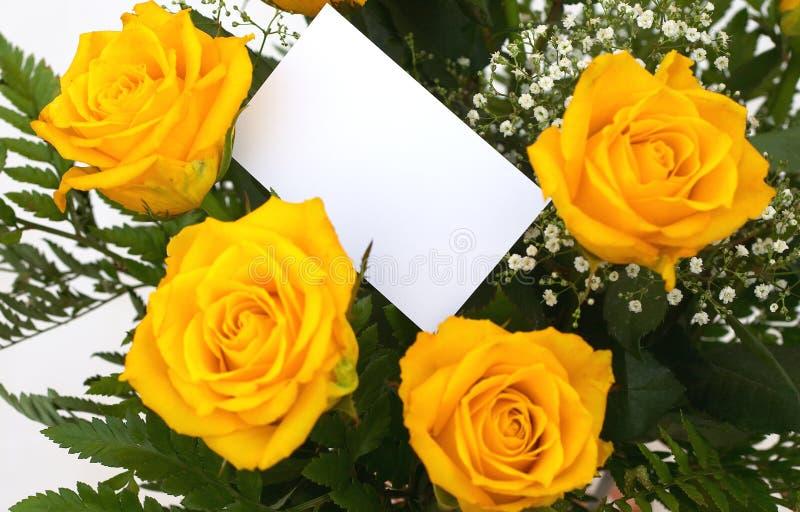 1玫瑰黄色 库存照片