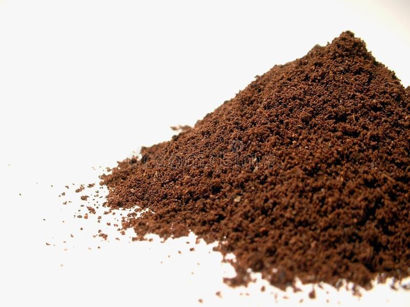 1粒咖啡粉末 免版税库存照片