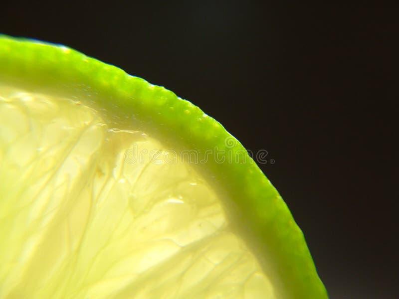 1 ärke- limefrukt royaltyfri bild