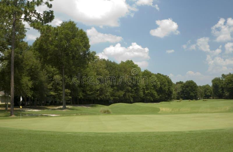 1 γκολφ πράσινο στοκ εικόνες