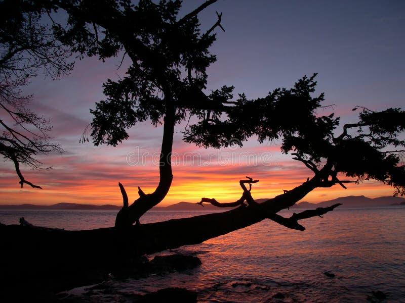 1 ηλιοβασίλεμα Στοκ εικόνες με δικαίωμα ελεύθερης χρήσης