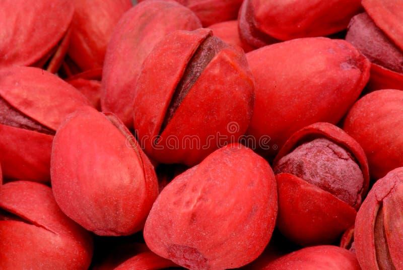 1 κόκκινο φυστικιών στοκ φωτογραφία με δικαίωμα ελεύθερης χρήσης