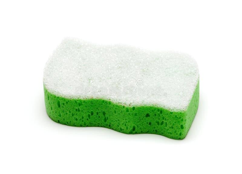 1 πράσινο σφουγγάρι στοκ φωτογραφία με δικαίωμα ελεύθερης χρήσης