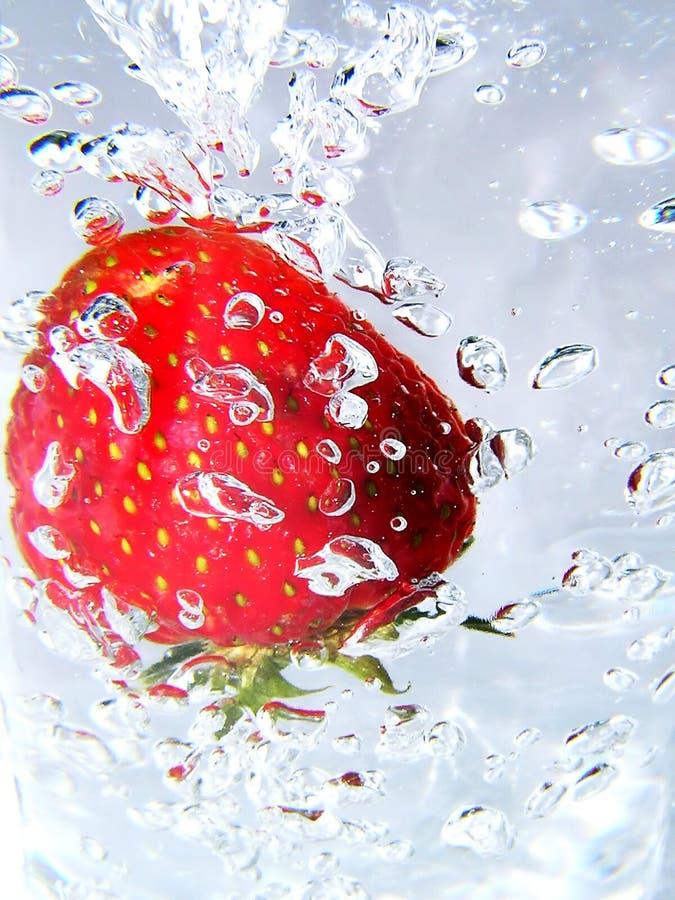 1 φράουλα στοκ φωτογραφίες με δικαίωμα ελεύθερης χρήσης