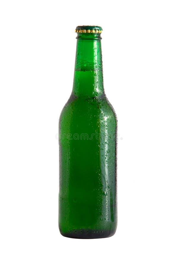 1 бутылка пива стоковое изображение